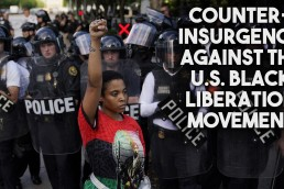 counterinsurgency black liberation movement
